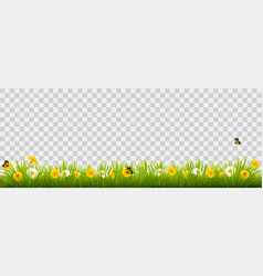 Summer nature landscape banner with flowers and vector