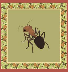 Ant color in vintage square frame wit vector