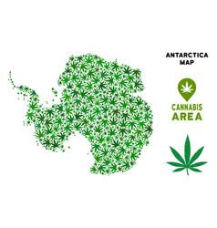 Marijuana mosaic antarctica map vector