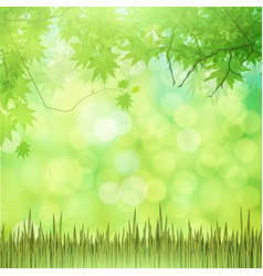 Natural green background with grass vector