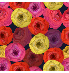 seamless pattern with vivid ranunculus vector image