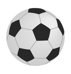 Soccer isometric 3d icon vector image