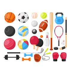 sport equipment vector image