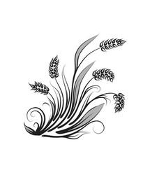 Wheats on white vector