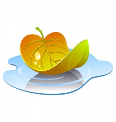 leaf in puddle vector image vector image