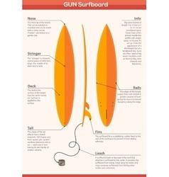 Gun surfboard infographics vector image
