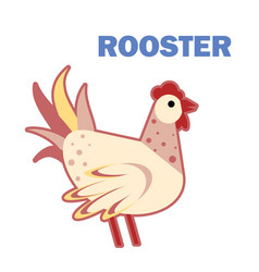 domestic bird rooster isolated vector image