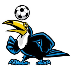 Toucan bird play soccer vector