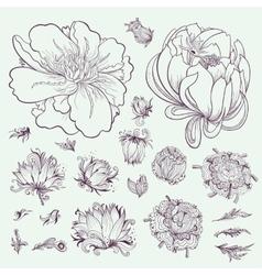 Outline Flowers Sketch Set vector image