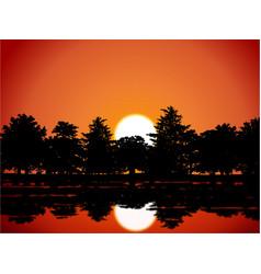 sunset woods scene vector image