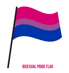 Bisexual pride flag designed with correct color vector