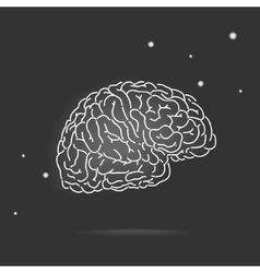 mysterious brain vector image