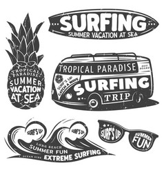 Vintage monochrome surfing graphics set vector