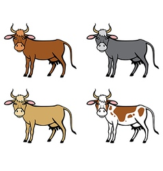 cow color vector image