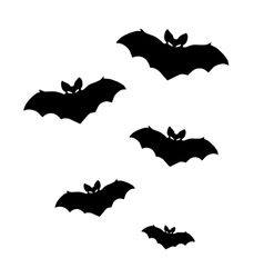 silhouettes of bats on white background vector image vector image