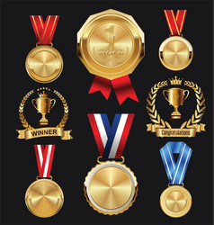 champion golden medal with red and blue ribbon vector image