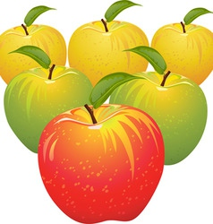 Juicy apples vector