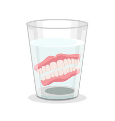 realistic detailed 3d dentures in glass vector image