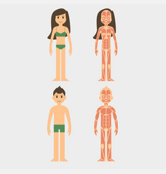 stylized male and female vector image