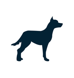 with a dog silhouette vector image