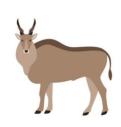 Antelope flat style vector