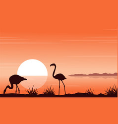 At sunset scenery with flamingo silhouettes vector