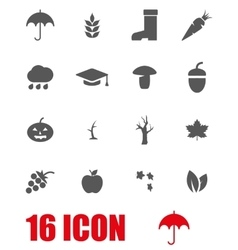 Grey autumn icon set vector