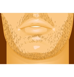 Mens lips vector