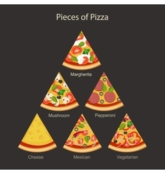 Pieces of Pizza vector