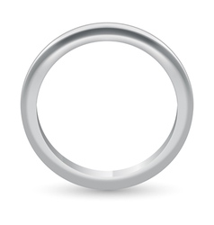 Ring vector image vector image