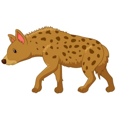 Cartoon of a hyena vector image