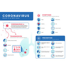 coronavirus covid19-19 or 2019-ncov infographic vector image