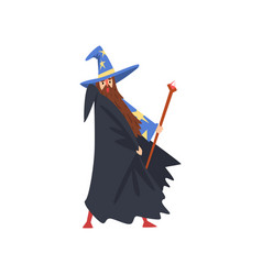 Male sorcerer with magic staff bearded wizard vector
