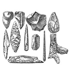 vintage engraving set prehistoric stone items vector image