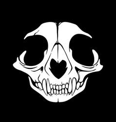 White animal skull on a black background vector