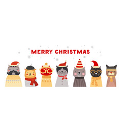 Christmas cats cute kittens in santa hats winter vector