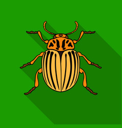 Colorado beetle icon in flat style isolated on vector