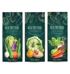 Healthy vegetables sketch banners on blackboard vector image