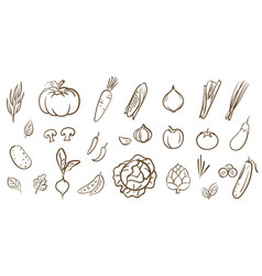 Mix vegetables collection cute line art in vector