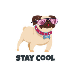 Pug dog with glasses funny puppy friend cute pug vector