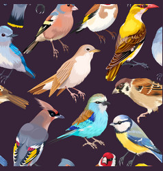 seamless patterns with birds vector image vector image