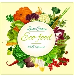 Eco food organic vegetables and fruits symbol vector image vector image
