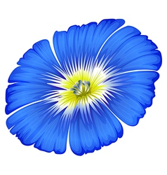 A blue blooming flower vector