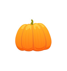 big cartoon pumpkin isolated vector image