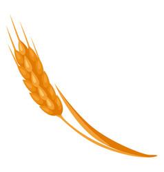 cartoon ripe ear wheat vector image