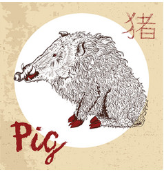 Chinese zodiac symbol of etching pig vector