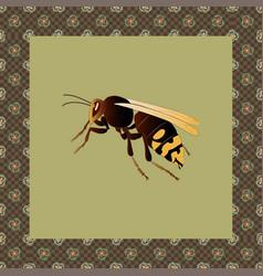 Hornet color in japanese ornament fra vector