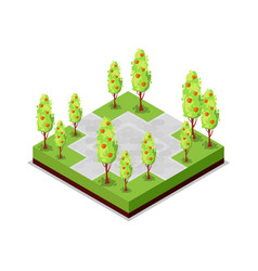 park road and apple trees isometric 3d icon vector image