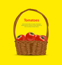 realistic detailed 3d basket with red ripe vector image
