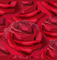 seamless blooming red flower roses vector image
